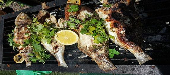 תומר חקנזר - שף פרטי לאירועים, מסיבת רווקות וסדנאות בישול.